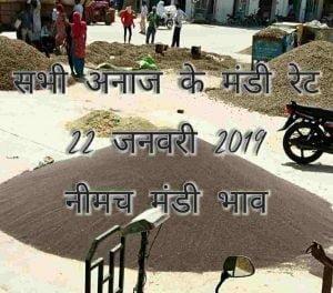 anaj-mandi-bhav-22-01-2019 , mandi rates