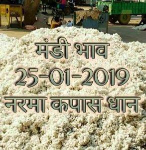 mandi-bhav-25-01-2019 , mandii bhav today