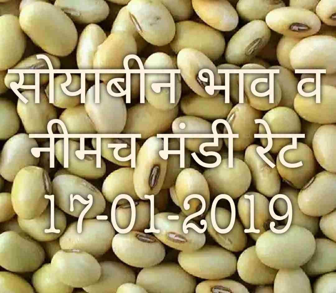 soyabean-neemach-mandi-bhav-17-01-2019