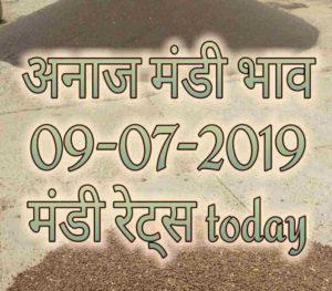 Mandi Rates 09-07-2019 Mandi Bhav Today