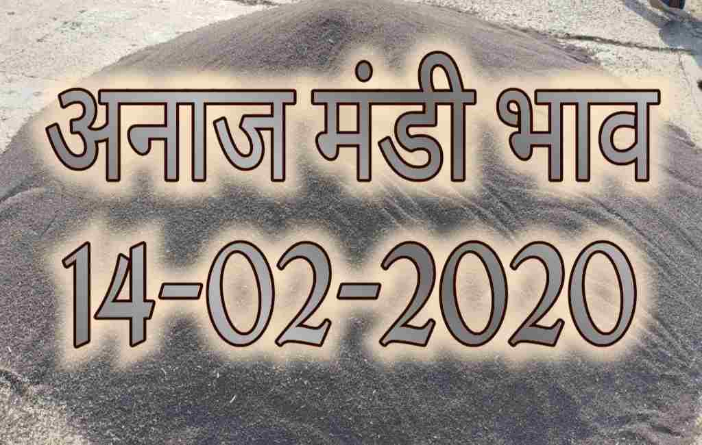 Mandi Bhav 14-02-2020 Today Rates