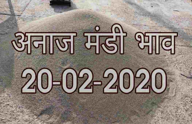 Mandi Bhav 20-02-2020 Mandi Rates