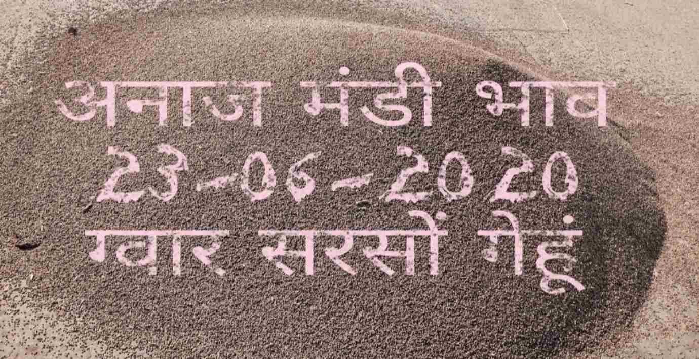 Mandi Bhav 23-06-2020 Gwar Sarso Jo Gehun Rates